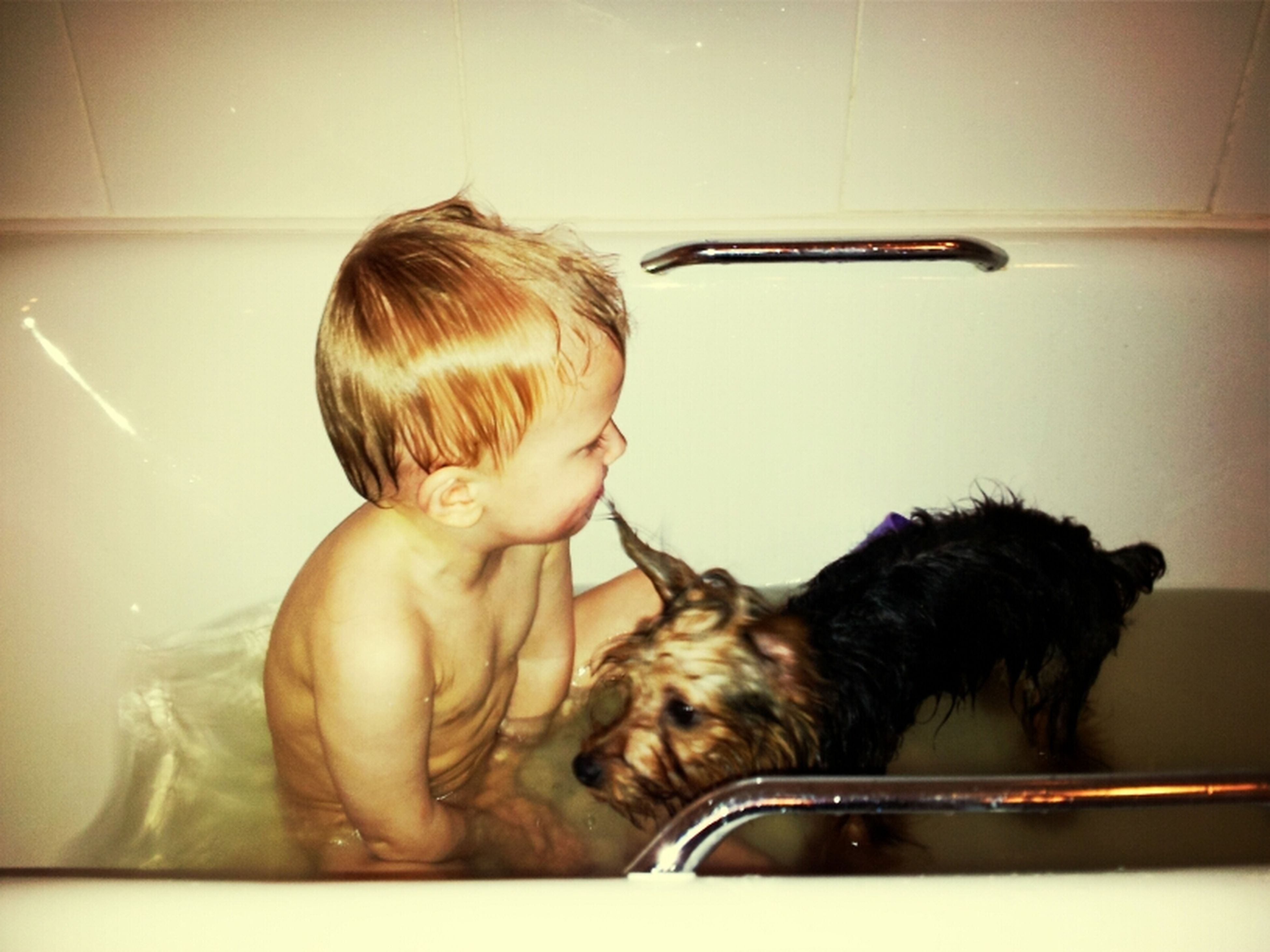 indoors, home interior, domestic animals, pets, sitting, domestic room, lifestyles, relaxation, mammal, person, leisure activity, dog, one animal, domestic life, bathroom, domestic bathroom, home, young women