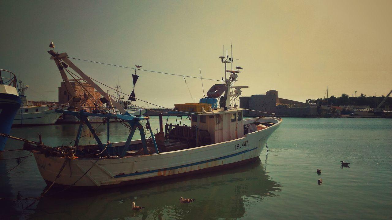 Trani Harbour Fishermen's Life Fishboat Popeye Boat Sea Seagulls Calm Blue Sky