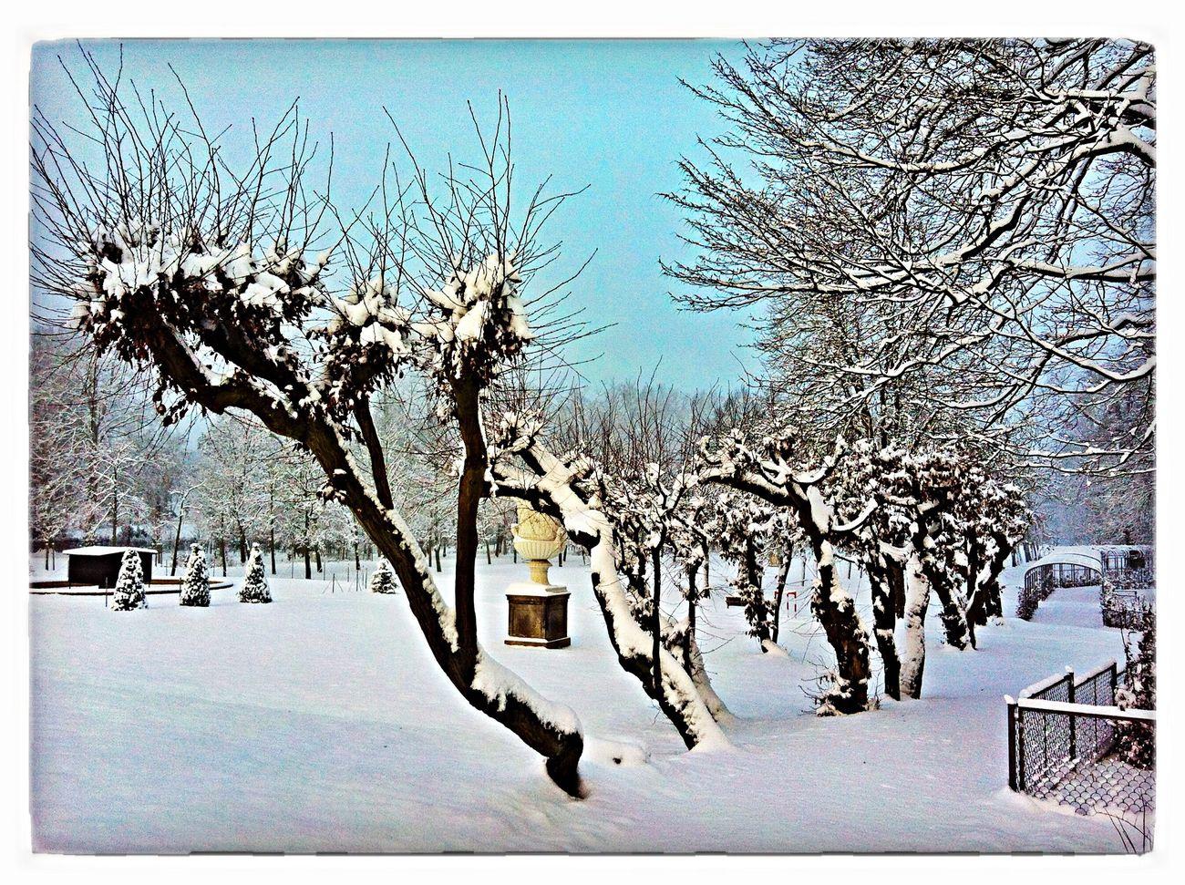 Wintertime Parkweg Schlosspark Schnee