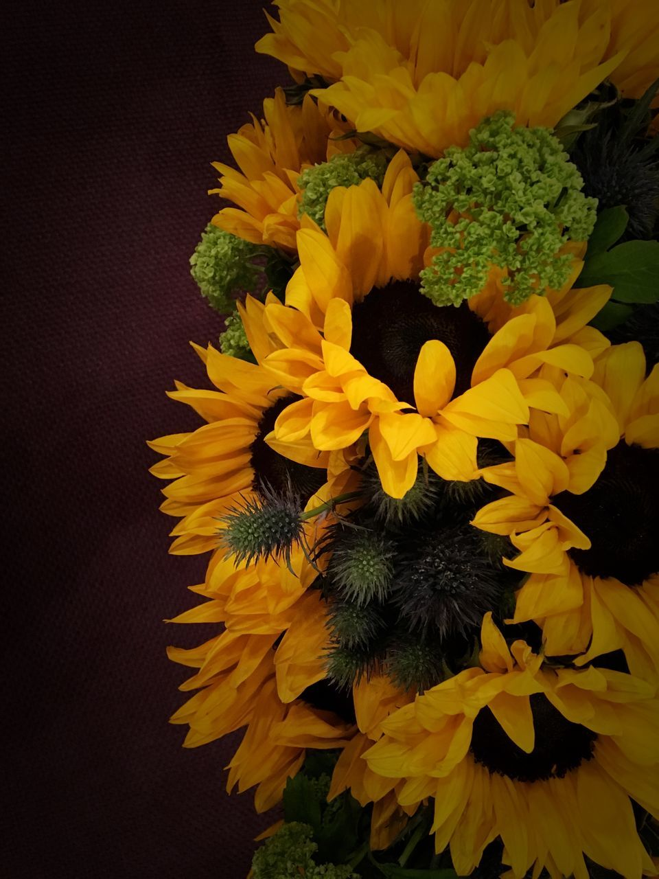 flower, yellow, petal, freshness, flower head, fragility, beauty in nature, nature, no people, sunflower, close-up, growth, blooming, indoors, day