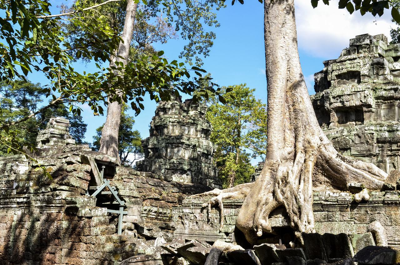 Ancient Angkor Angkor Thom Angkor Wat Cambodia Castle Character Day Siem Reap Stone Statues Travel Destinations Travel Photography Tree
