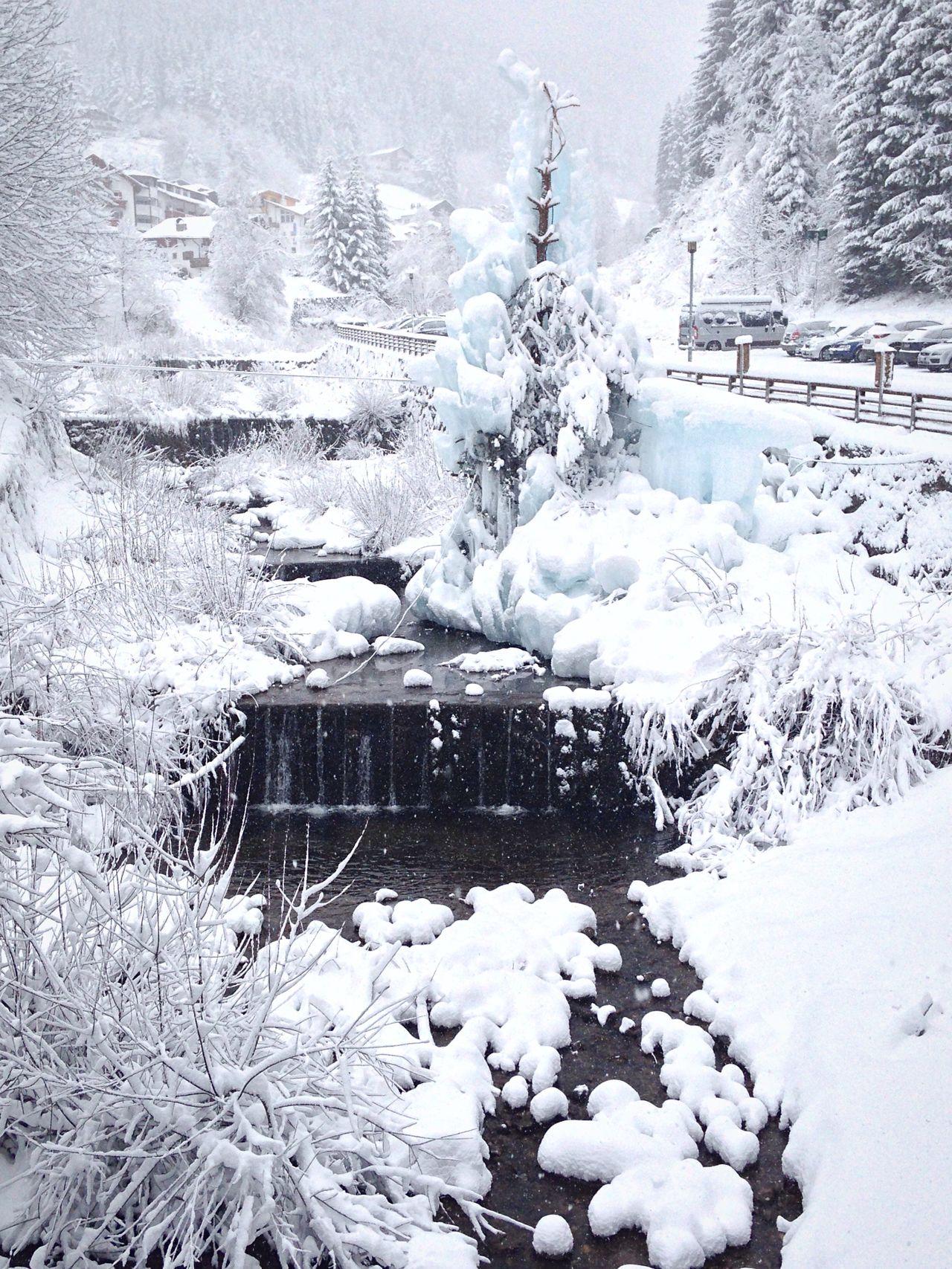 Water Snow Wintertime Winter Tree Frozen Nature Frozen Fir Tree Trentino Alto Adige Waterfall Welschnofen Nova Levante Bolzano - Bozen Bolzano Ice Nature