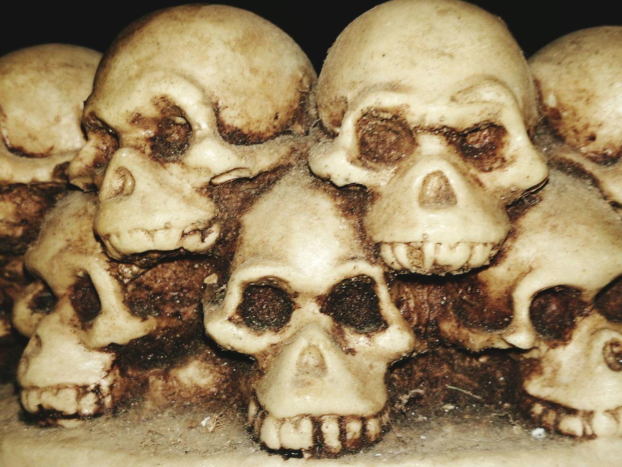 Close-up Human Skull Ashtray