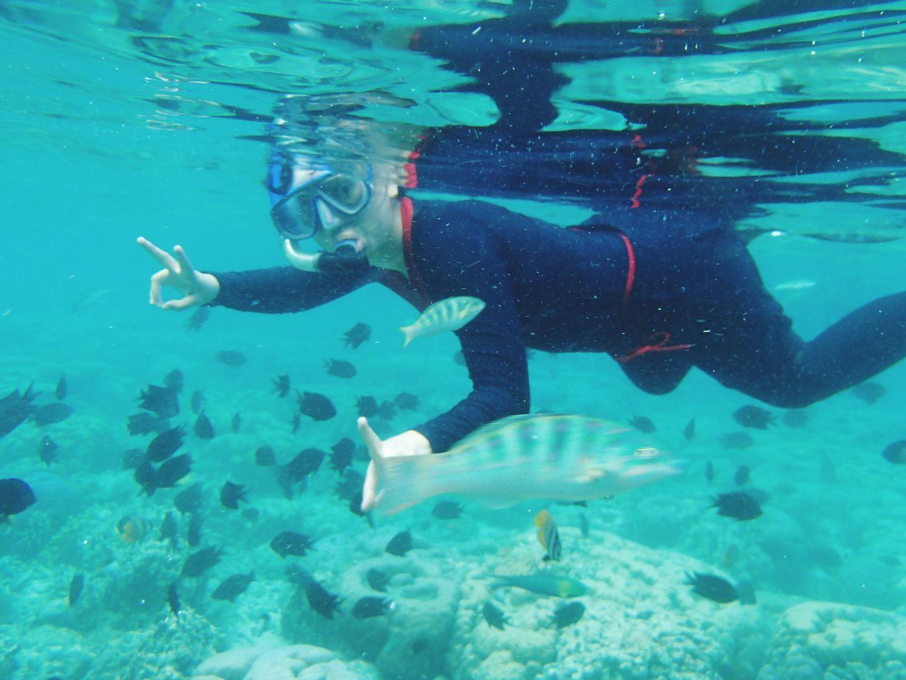 snorkling @bunaken island