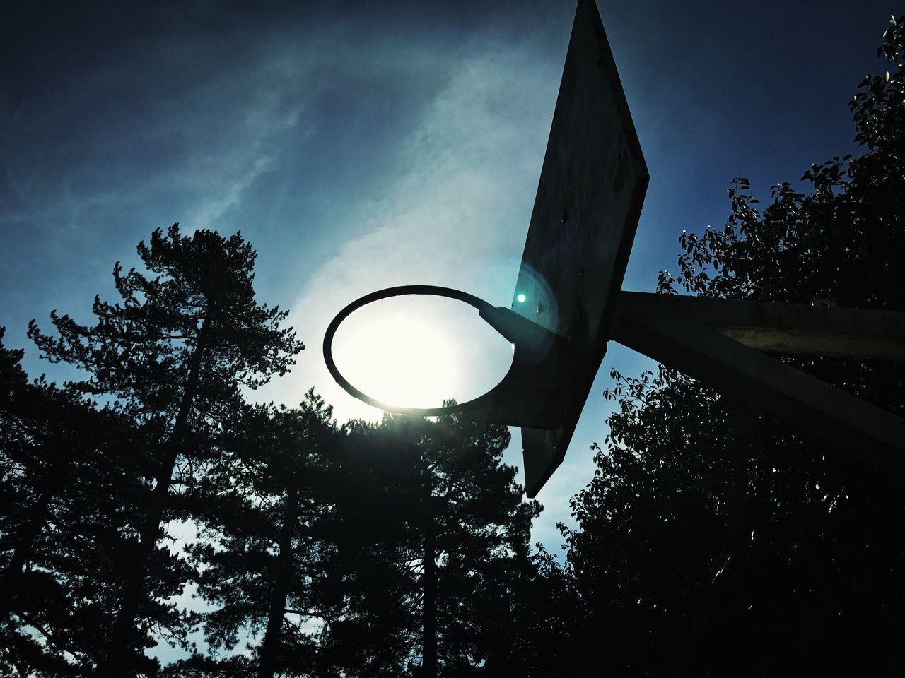 Tree Low Angle View Sky No People Silhouette Outdoors Day Basketball Hoop Basketball Sun Glare No Net