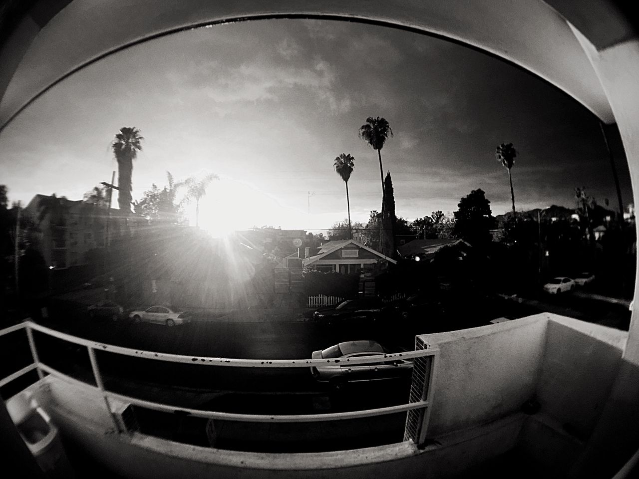 Balcony Balcony View Sunlight Sky Sun Fish-eye Lens Day City City Sky Clouds Blackandwhite Fisheye