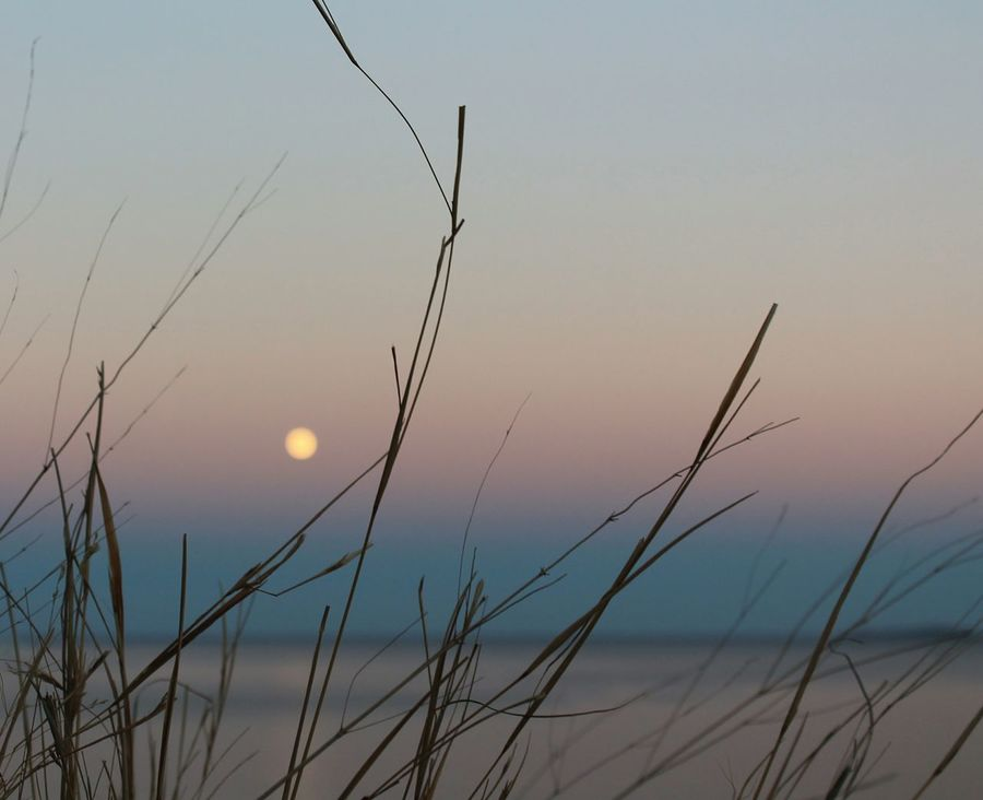 Live For The Story Moon Nature Beauty In Nature Landscape No People Sunset Sky Water