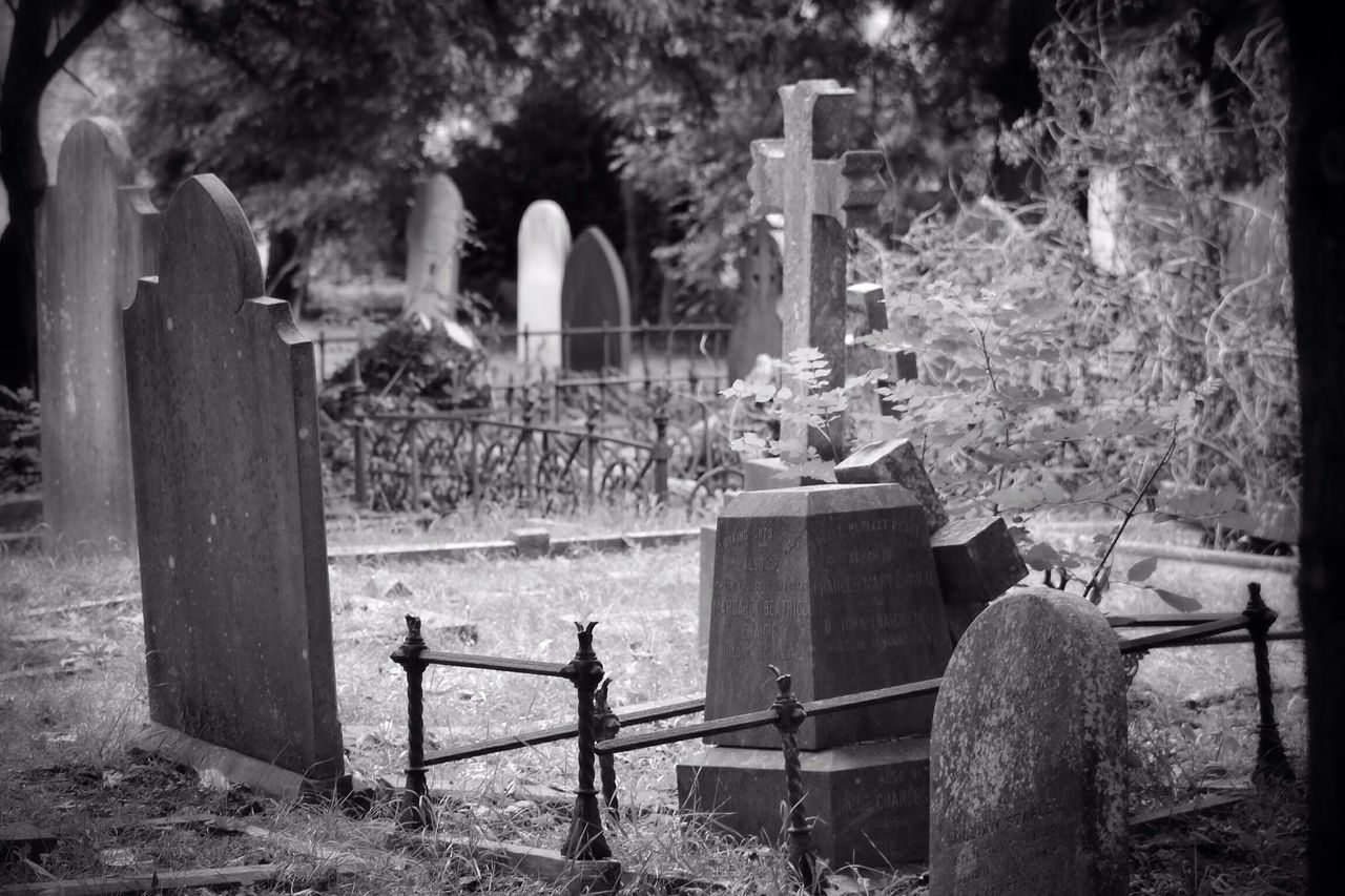 cemetery, tombstone, graveyard, no people, gravestone, memorial, outdoors, day, nature, animal themes, mammal