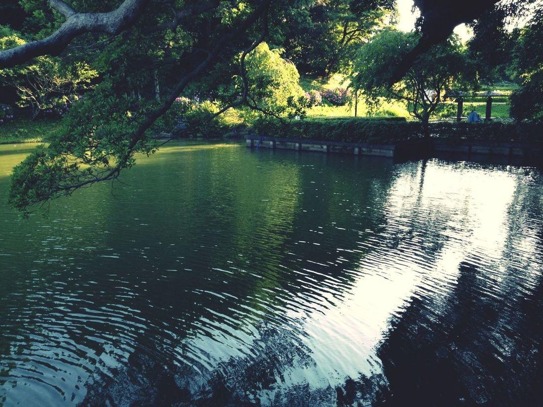 Relaxing Enjoying Nature