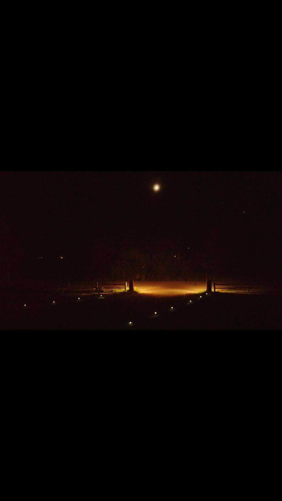 Night Drive Way Moon lights Trees Fence Road