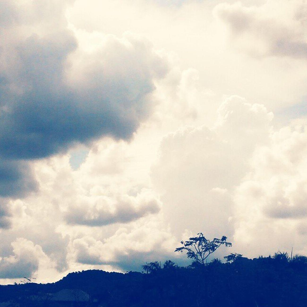 Malaysia Tanjungmalim Upsi Cloudysky Scenery Daylight Nature Trees