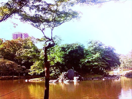 Pond at Korakuen by @naka1978