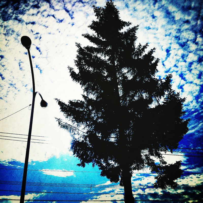 Silhouette by Kazuhi