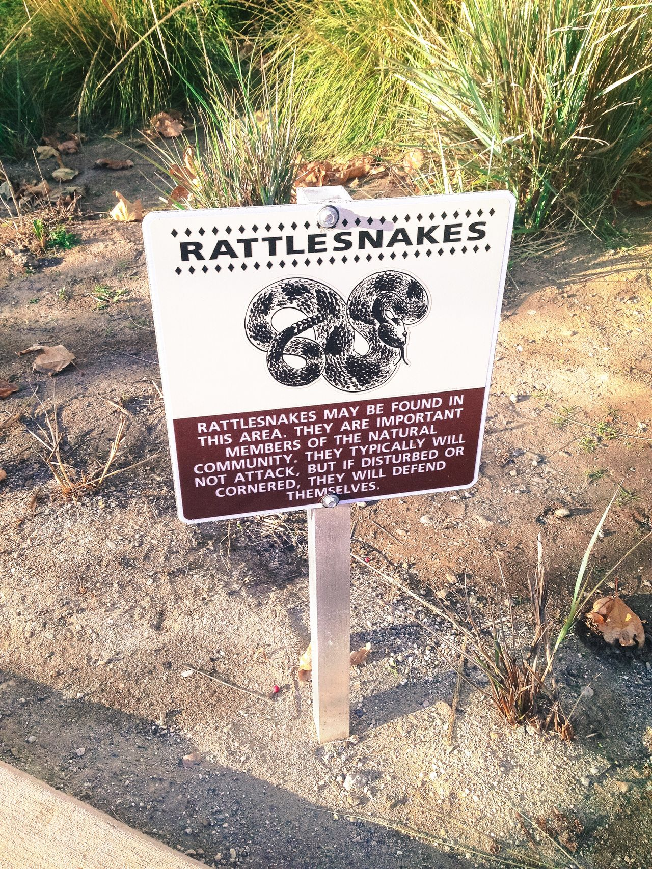 Rattlesnakes Warning Communication Field Text Grass Outdoors Nature No People Conservation Environment Warning Warning Sign Danger Sign Desert California Animals In The Wild Tourism Travel Danger Sign Danger Zone Rattlesnake Backgrounds Grasses Sand Arid Landscape