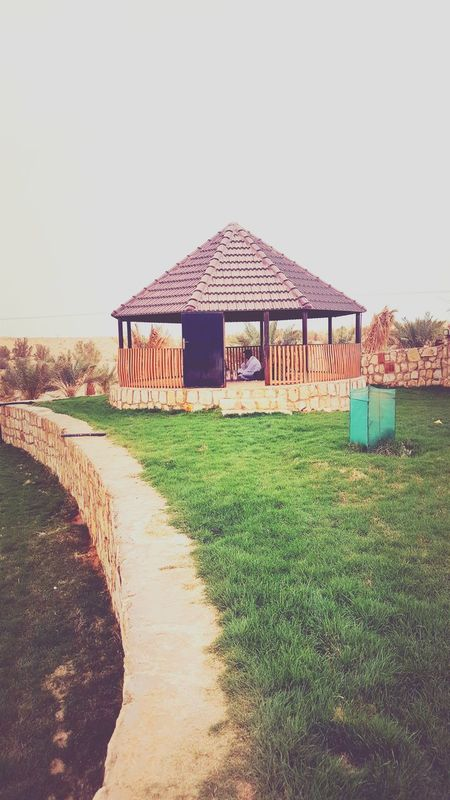 Middle East Middle Of Desert Grass Green Nature Tea Time Arabic Style