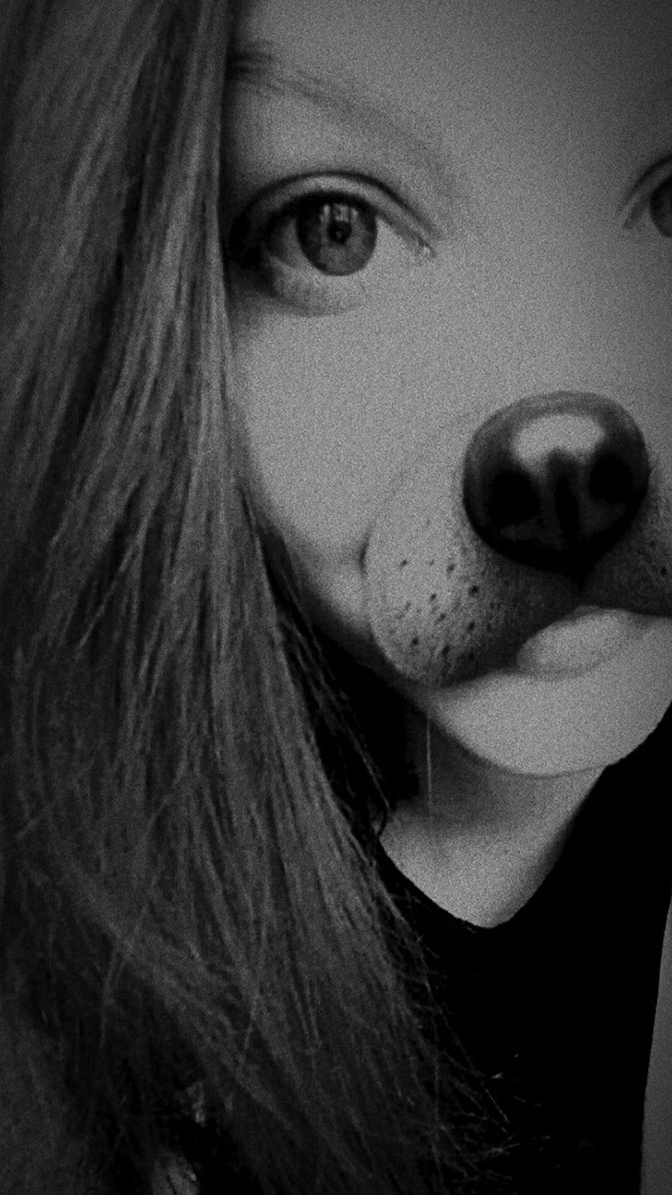DONT LOOK! !IM NOT PERFECT. I HAVE BEUTIFUL HEART. . ImNormal LOL! Creepy Night Dark Wolf follow #f4f #followme #TagsForLikes #TFLers #followforfollow #follow4follow #teamfollowback #followher followbackteam followh Followers Following Follower Follows Followhim Follow Me :) Follow_me Love??? Not