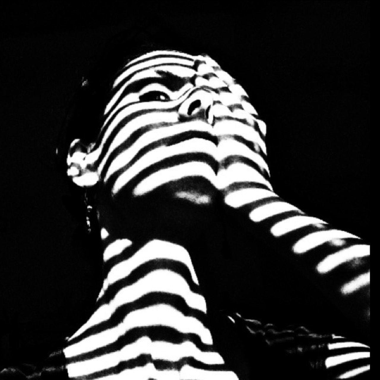 striped, zebra, black color, studio shot, pattern, one animal, no people, animal themes, black background, mammal, close-up, indoors, day