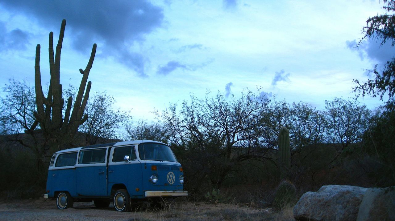 Saguaro Cactus Desert Volkswagen Bus No People Outdoors Abandoned Car Desert Landscape Blue Tucson, Arizona