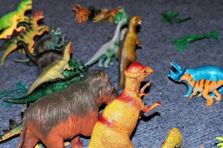 Dinosaurs Colours Dinosaurs Green Learning Red Toys Beauty In Nature Brown Childrens Toys Close-up Creative Educational Enjoyment High Angle View History No People Plastic Toys Playing Pre Historic Quiet Play Role Playing