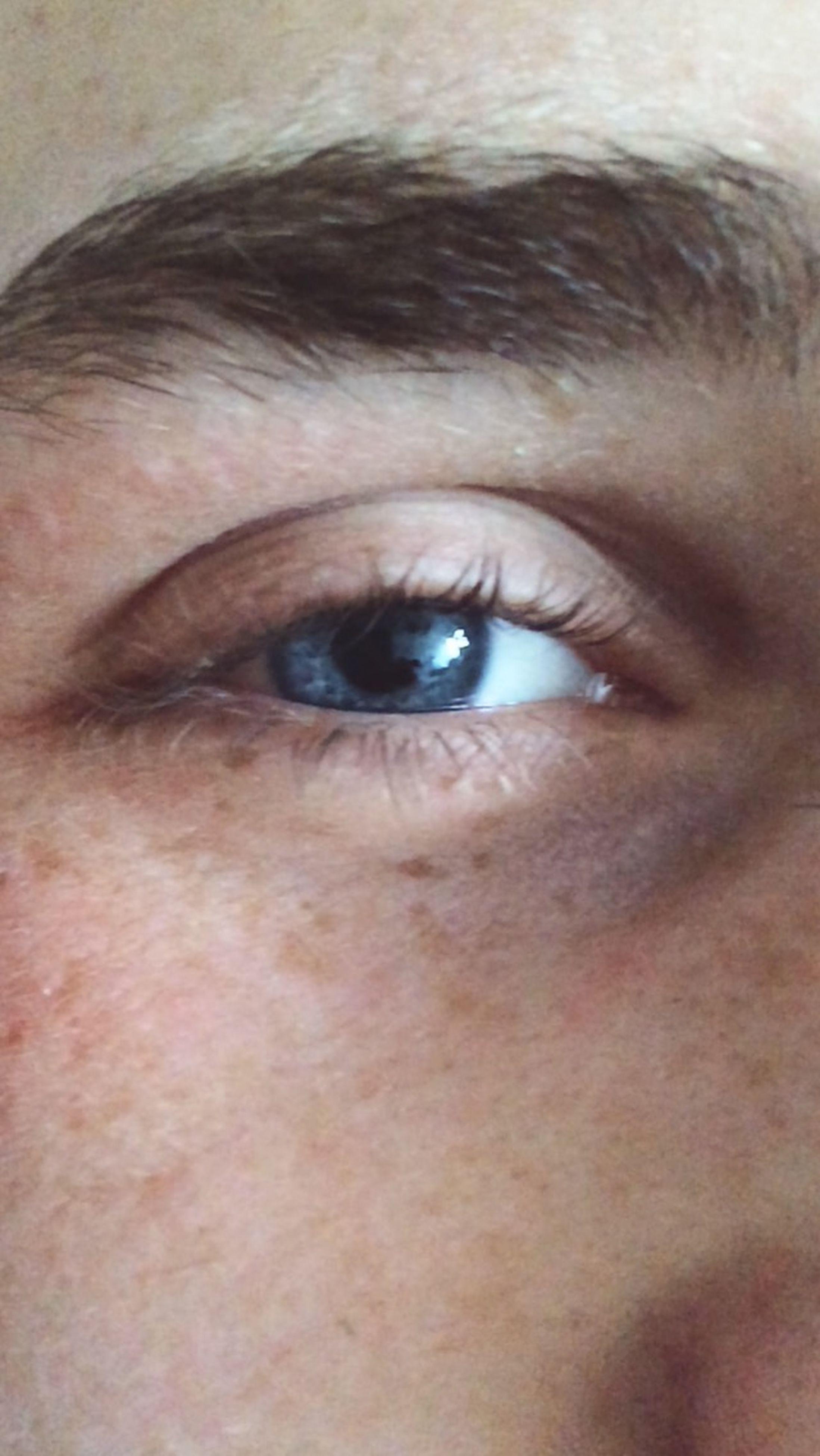 human eye, close-up, eyelash, part of, human skin, human face, eyesight, sensory perception, indoors, lifestyles, extreme close-up, headshot, full frame, portrait, looking at camera, iris - eye, extreme close up