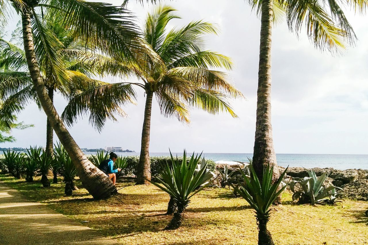 Miles Away right now in Barbados Palm Tree Tree Nature Sea Beach Outdoors Sky Day No People Beauty In Nature Horizon Over Water Water Travel Destinations Open Edit EyeEm Best Shots One Person Eye4photography  Women Fresh 3 Streetphoto_color Real People Nature