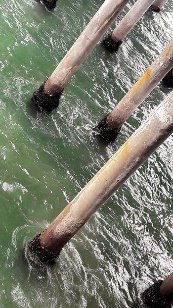 Sea Water Pier Green Color No People Close-up Outdoor Estructure Estructuras