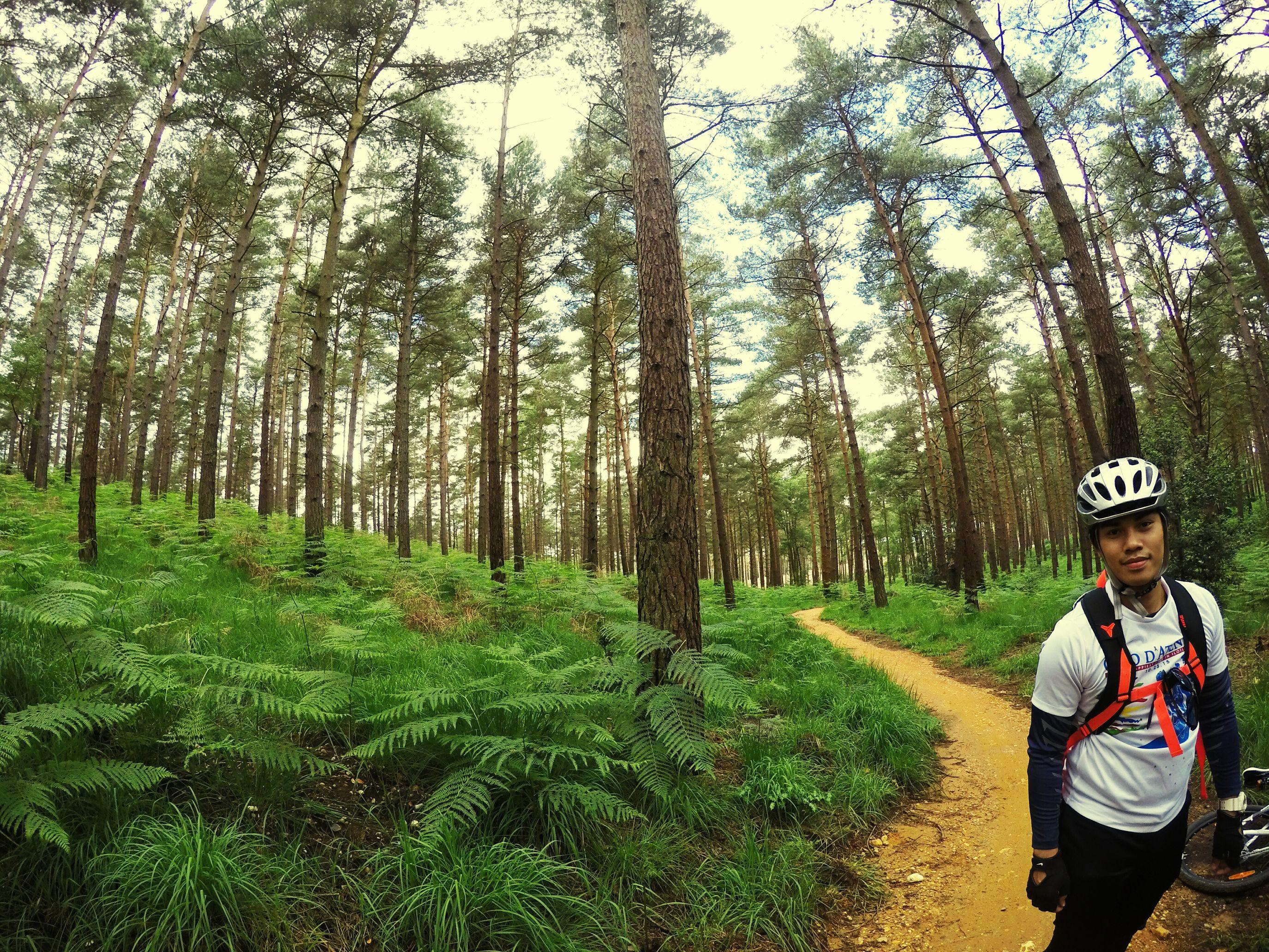 rider. 🚴💙 Bike Bike Ride Bike Love Nature United Kingdom Swinley Feel The Journey