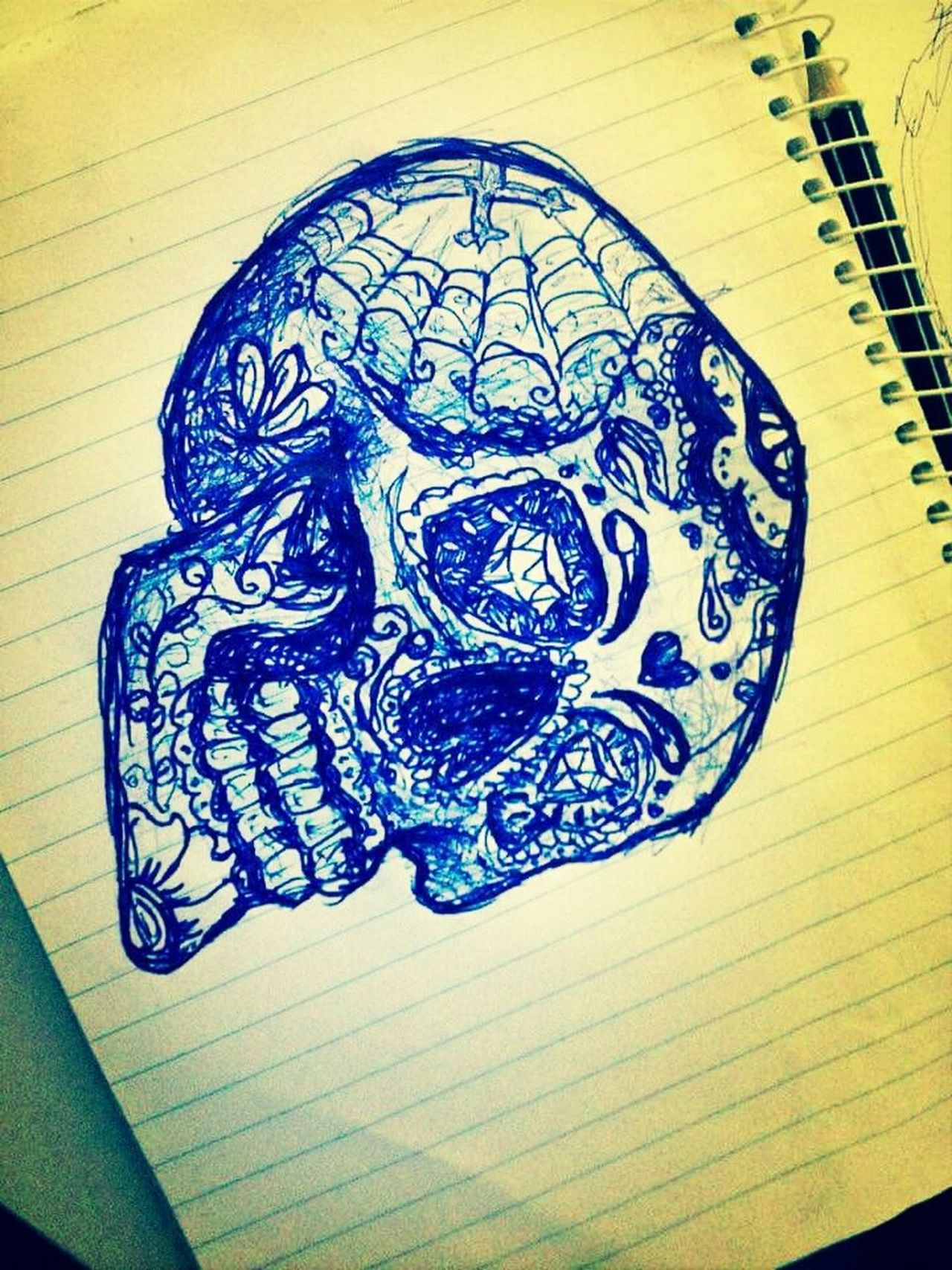 Drawing Pen Art Sugar Skull Ink Drawing