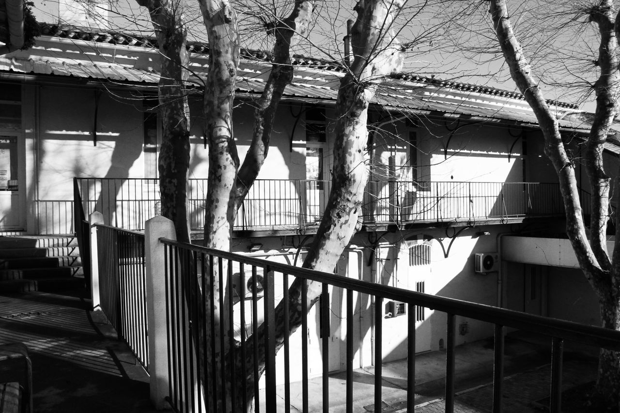 Architecture Black And White Building Built Structure Diminishing Perspective Leading Narrow Railing Scool Staircase The Way Forward Trees Wall