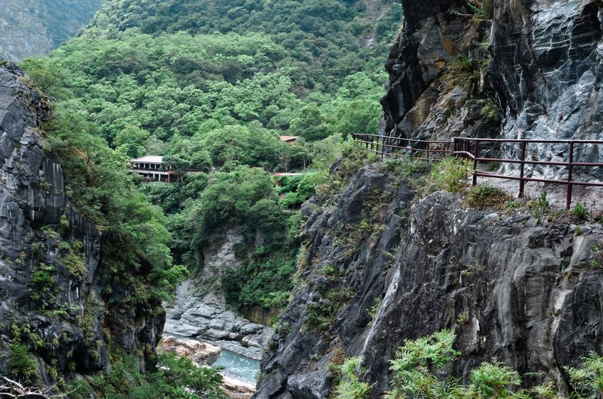 EyeEm Nature Lover Fresh Air National Park Peace Taiwan Taroko National Park Beauty In Nature Cliff Day Fairyland Forest Greenery Landscape Mountain Nature Outdoors Rock - Object Scenics Tranquil Scene Tranquility Tree Wide Angle View
