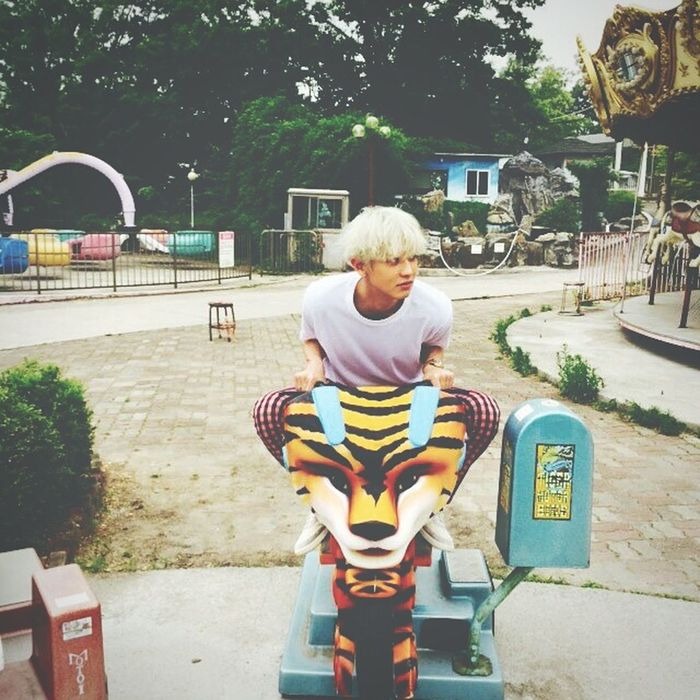 Park Chanyeol Kpop Exo K