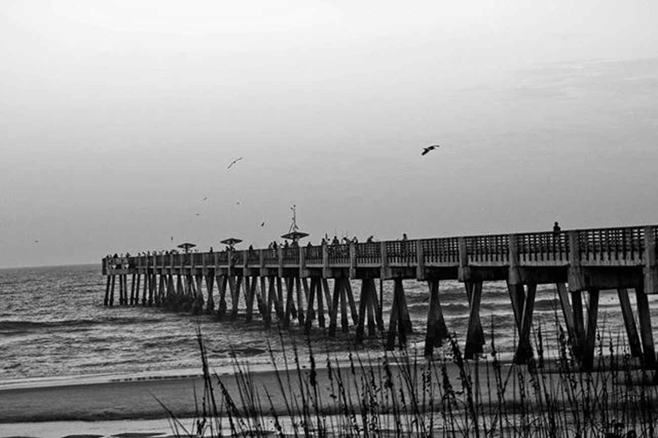 Serene Jaxbeachpier Jaxbeach Atlanticocean Beach Seaoats Surf Coastal Birds Voidlive Saltlife 904 Duval  Igersjax Onlyinduval Firstcoastnews Firstcoastliving Jacksonville Eastcoast Floridaliving  LoveFl Roamflorida Pureflorida Florida Blackandwhite Canon teamcanon