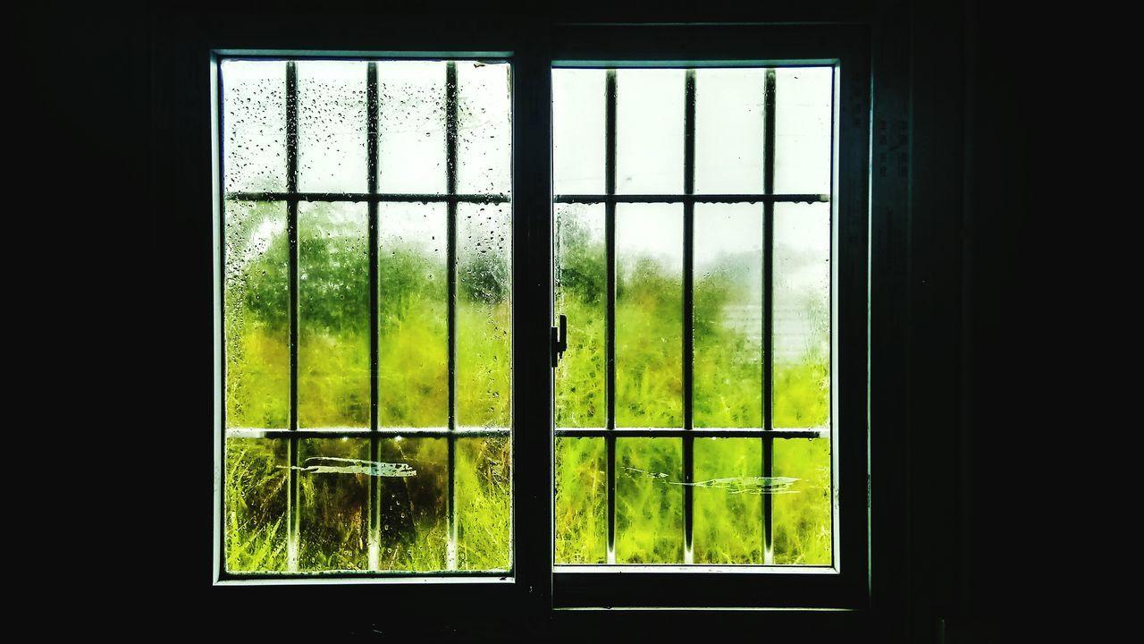 After Rain Window Day