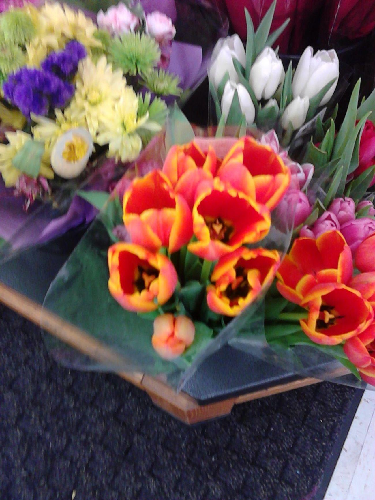 Una De Flores Favoritas :)