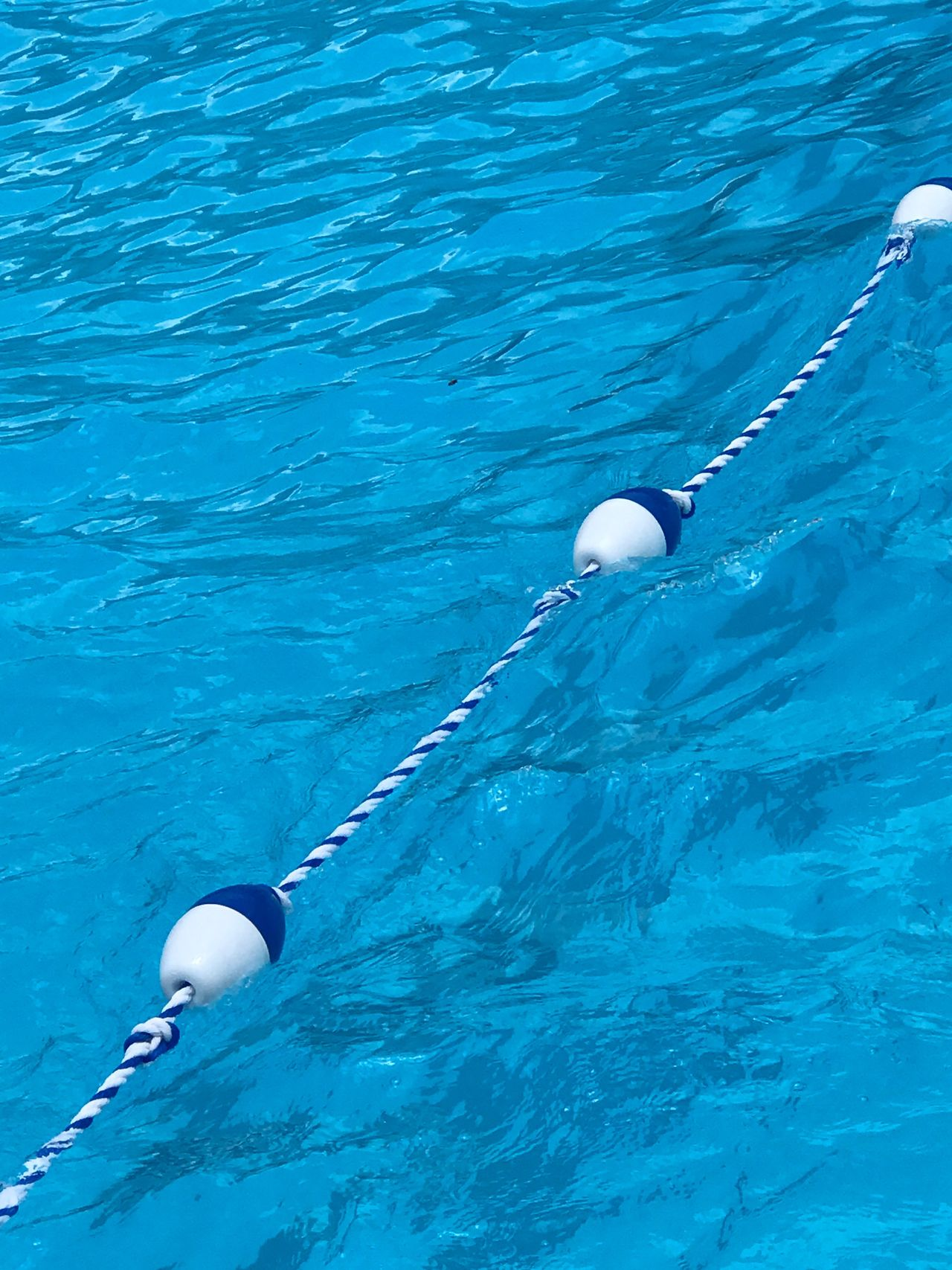 Crystal blue waters with a swimming buoy marking deep end of pool. Swimming Pool Clear Water Blue Water Water Outdoors Day No People Blue Pool Safety Floatline Safety Rope Divider Rope Safety Refreshing Summer Swim