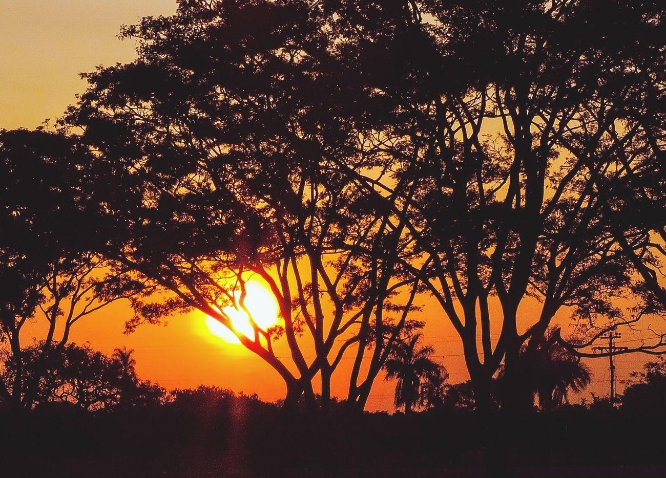 Puesta de sol <3 Sunset Relaxing Colors Escaping