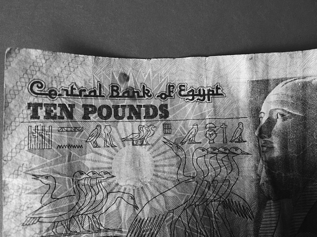Money Monochrome Blackandwhite Photography Egyptian Egypt Old Money Around The World Bill Ten Pounds Ten Pound Note Ten Egyptian Pounds Oldfashion Paper Change Bank Banking Credit Values Worthy Central Bank Of Egypt Central Bank Business