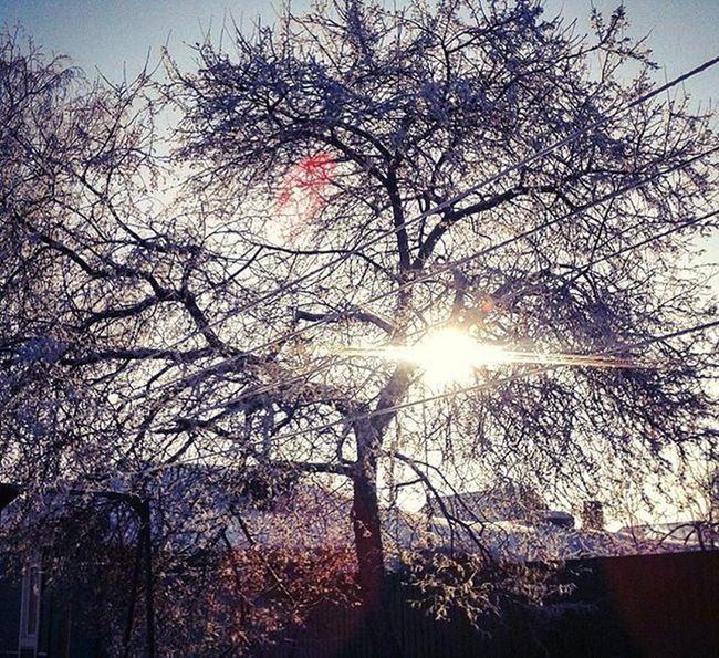 омск сибирь зима январь Морозисолнце Frostandsun Omsk Siberia January
