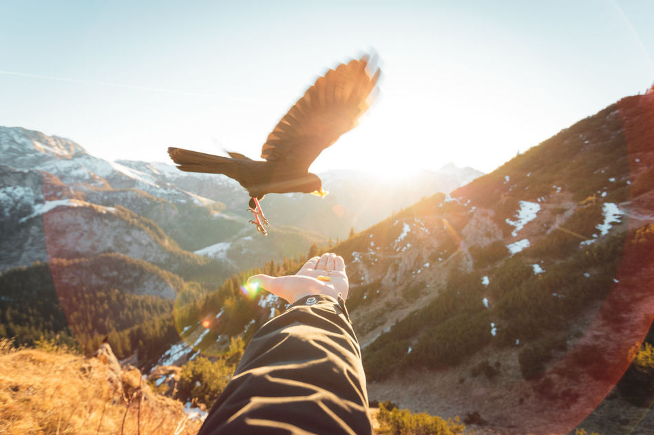 Fly away. Alps Animal Themes Bavaria Beauty In Nature Close-up Day Germany Human Body Part Human Leg Leisure Activity Low Section Mountain Nature One Person Outdoors People Real People Sky Spread Wings Sunlight
