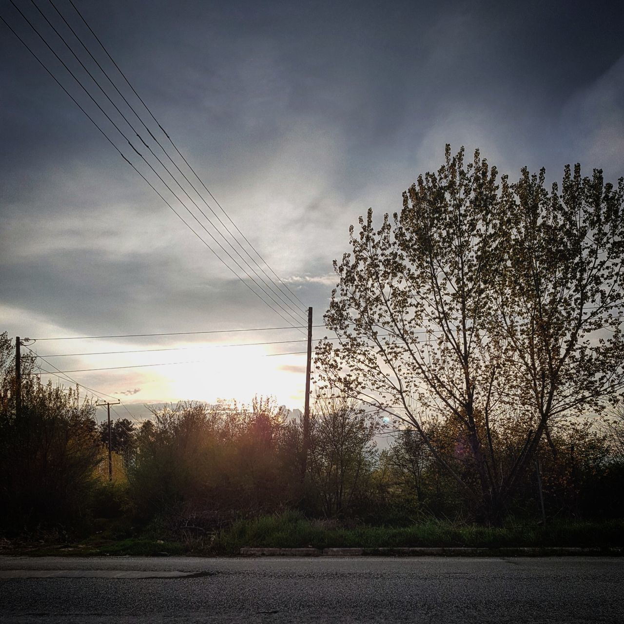 tree, sky, no people, cloud - sky, outdoors, nature, road, beauty in nature, day, scenics, landscape
