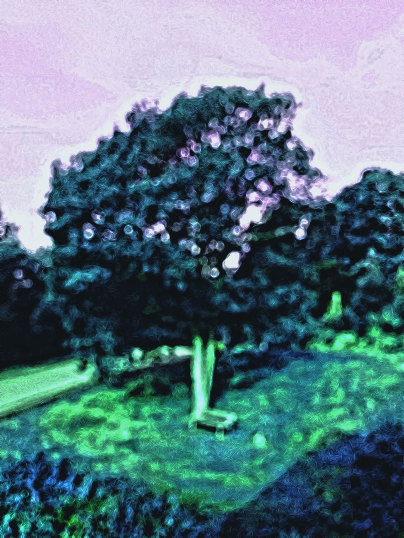 Tree with bench Impressionism TreePorn Eyem Best Edits