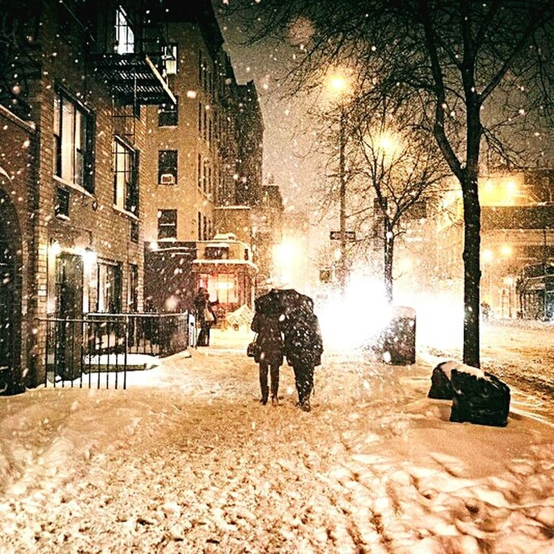 Cold Temperature Winter City Street Snowing ✨🎀💚