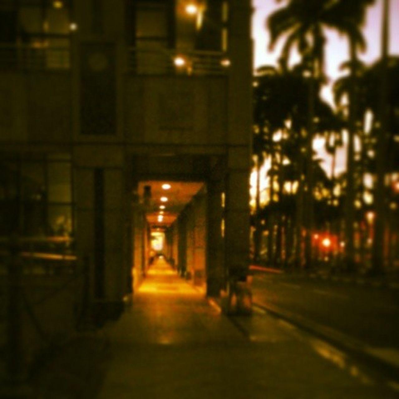 Shooting Evening PourtLouis StateBank Mauritius