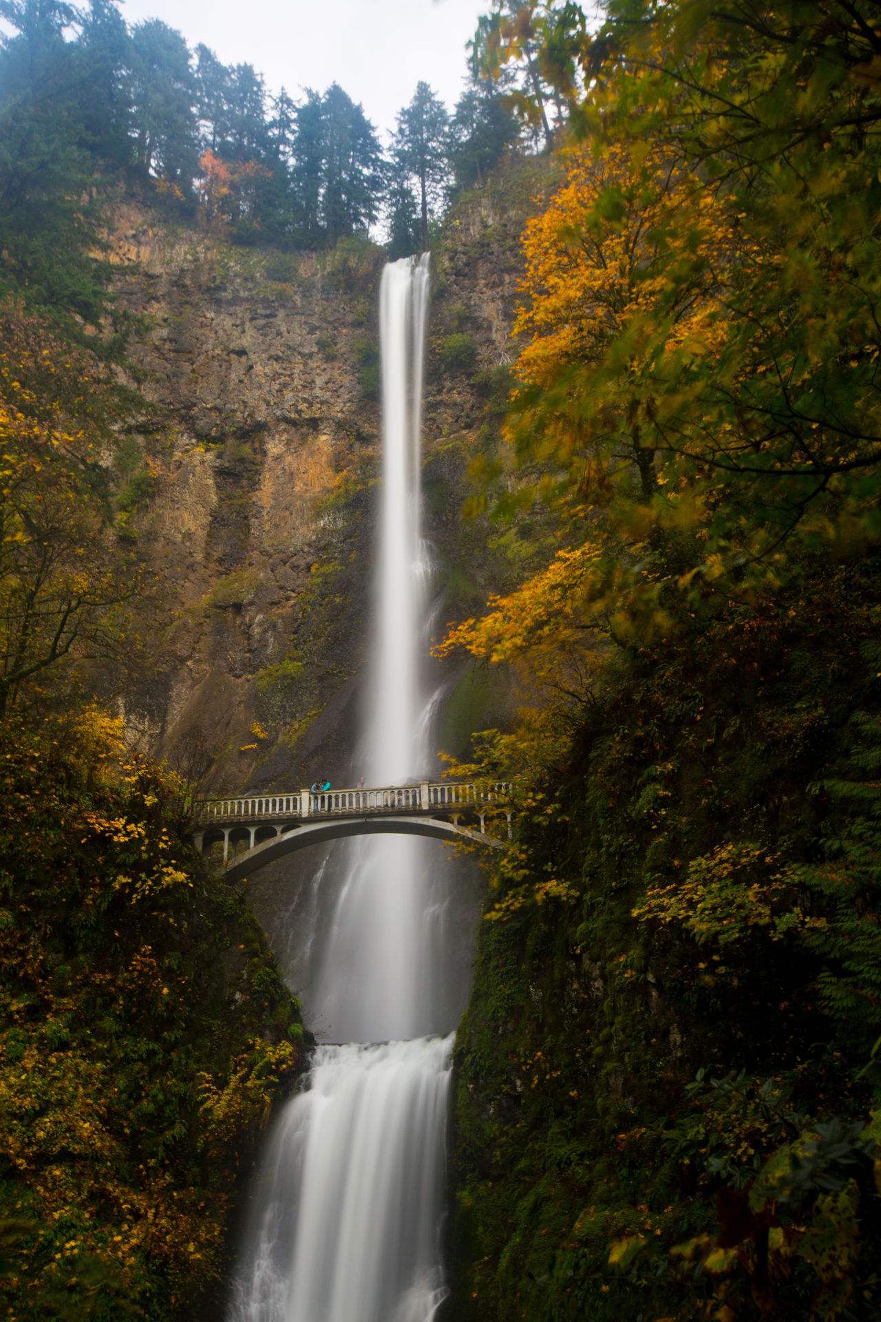 Autumn Beauty In Nature Multnomah Falls  Multnomah Falls Oregon Oregon Oregonexplored Waterfall
