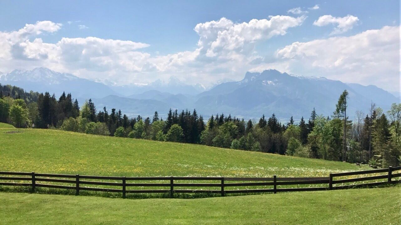 Mountain Nature Beauty In Nature Sky Tranquility Green Color Grass No People Mountain Range Landscape Growth Tranquil Scene Scenics Tree Day Outdoors Salzburg Salzburg, Austria SalzburgerLand Salzburger Land Gaisberg Austria