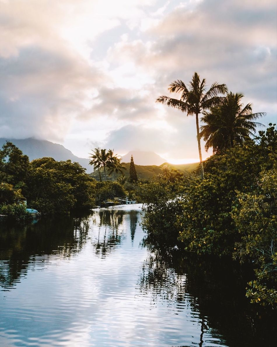 Found this place by accident. The Secret Spaces Tree Water Nature Reflection Sky Reflection Lake Sunset Landscape Tranquility Outdoors No People Tropical Climate Palm Tree Scenics Vacations Beauty In Nature Extreme Weather Day