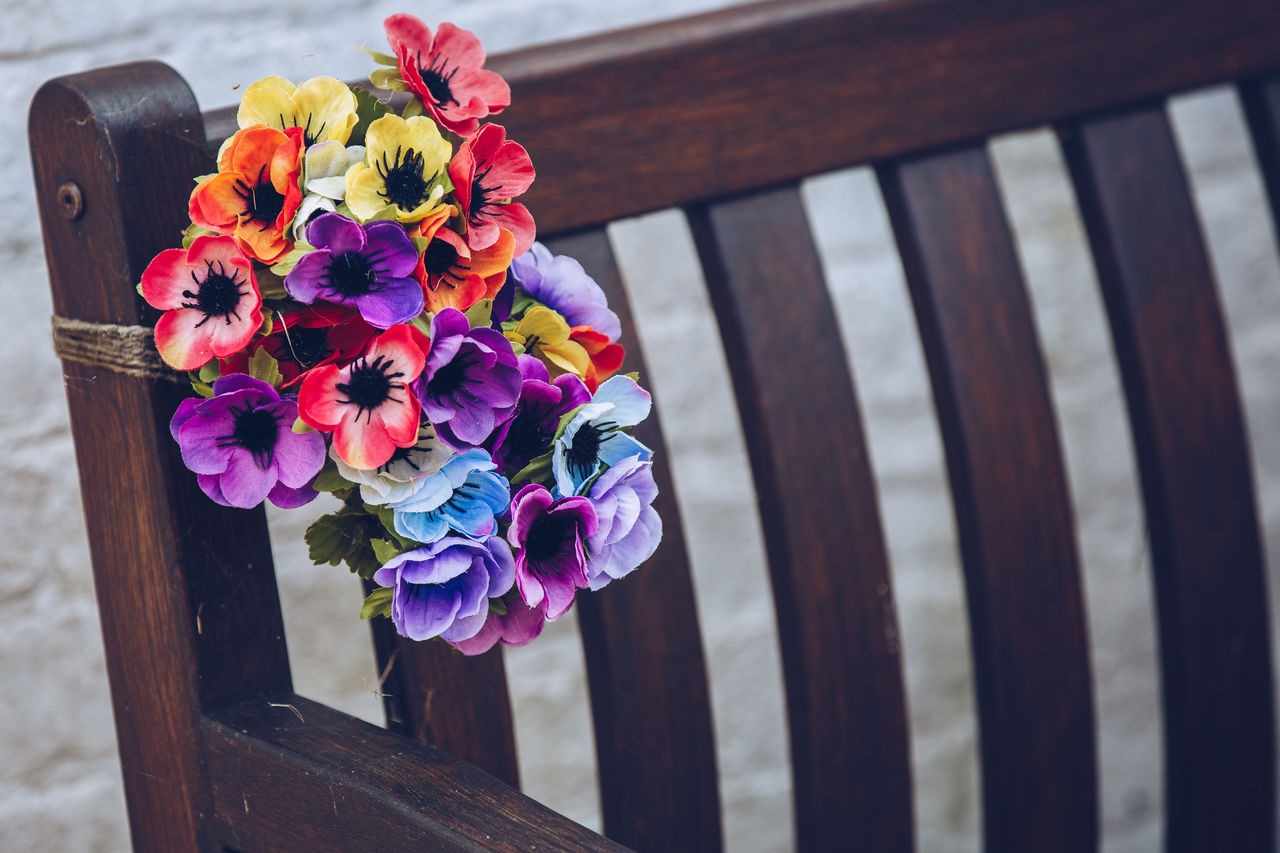 flower, wood - material, no people, close-up, multi colored, day, outdoors, freshness, nature, fragility, flower head