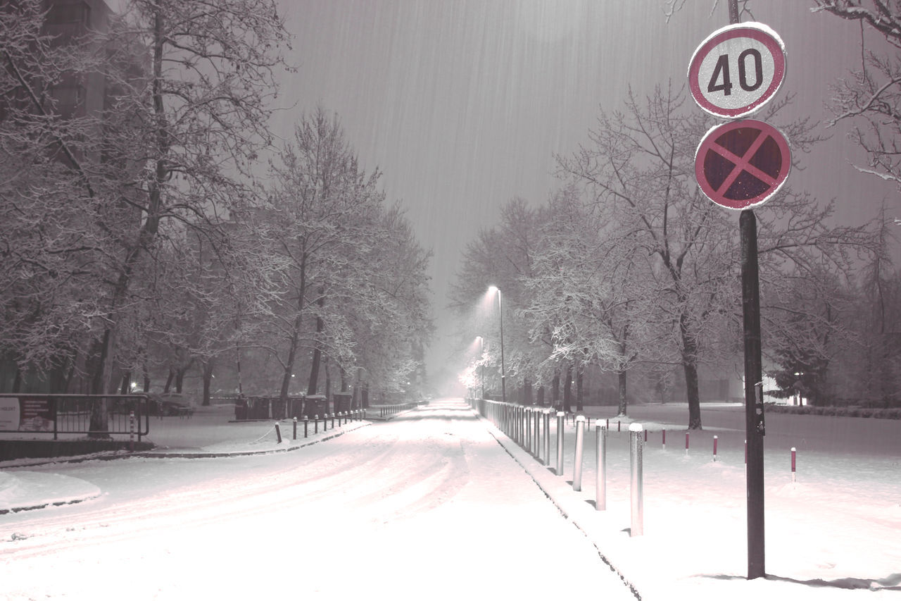 40 Bare Tree Beauty In Nature Cold Temperature Day Nature No Parking Sign No People Outdoors Road Road Sign Snow Snowing Street The Way Forward Traffic Sign Transportation Tree Weather Winter