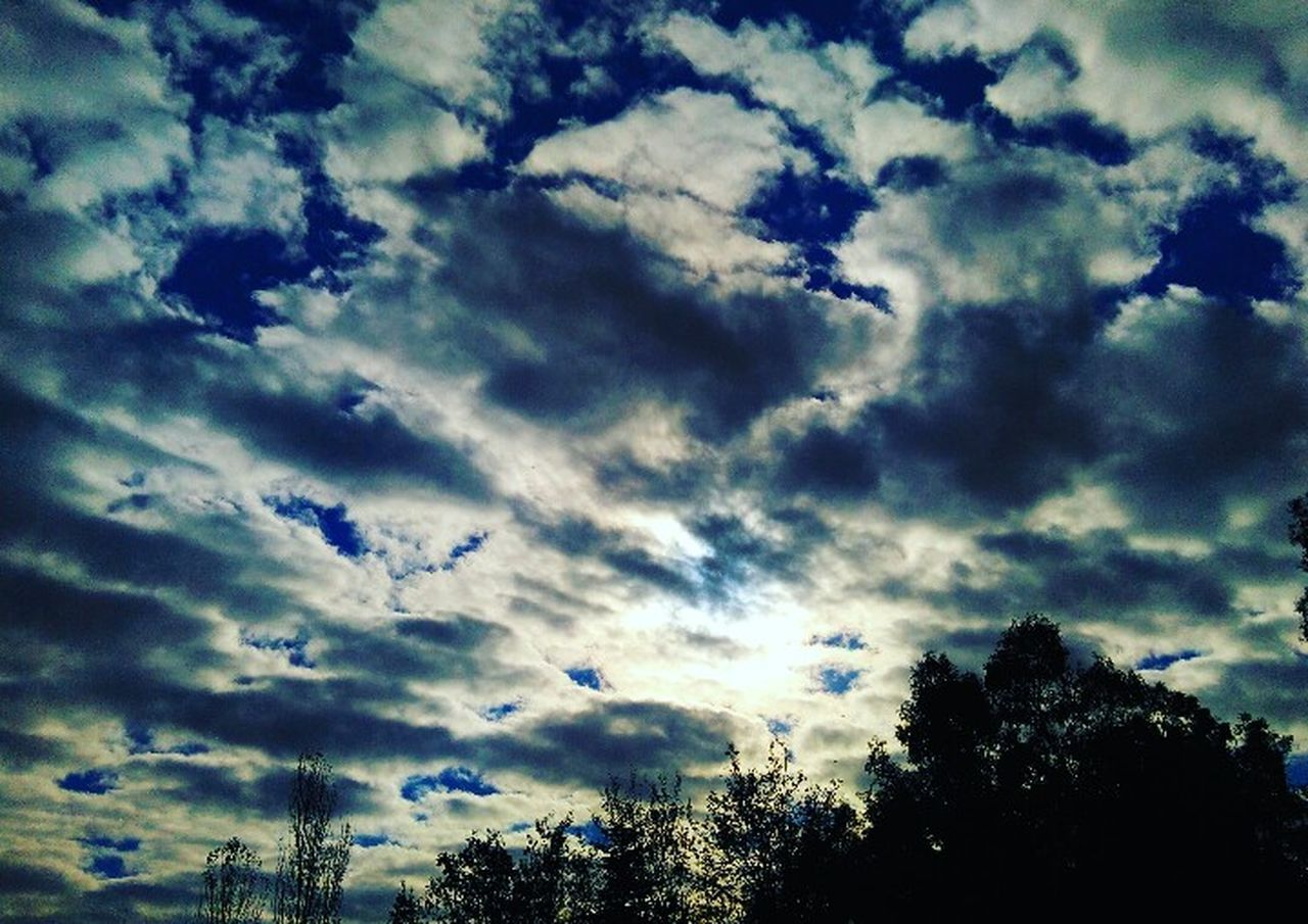 sky, cloud - sky, low angle view, beauty in nature, nature, silhouette, cloudscape, tree, dramatic sky, no people, scenics, outdoors, day, tranquil scene, tranquility, awe