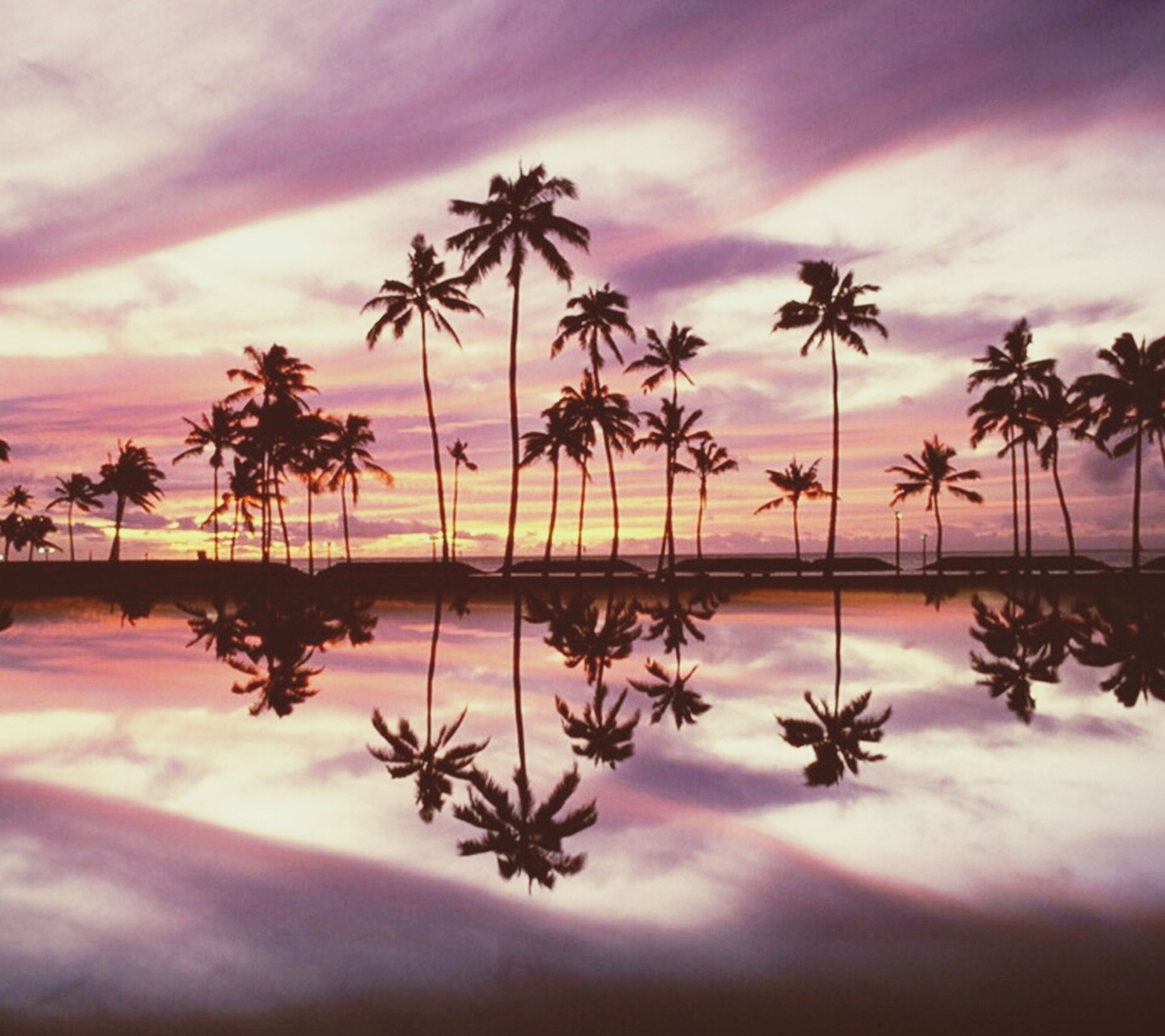 palm tree, sunset, sky, sea, water, tranquility, tranquil scene, beauty in nature, scenics, horizon over water, cloud - sky, beach, tree, nature, silhouette, idyllic, growth, cloud, reflection, shore